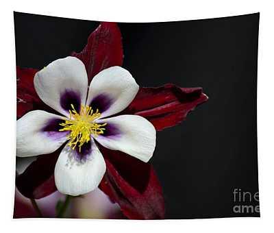 Beautiful White Petal Yellow Stamen Purple Shades Aquilegia Columbine Flower Tapestry