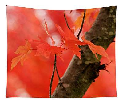 Beauty Of Red Tapestry