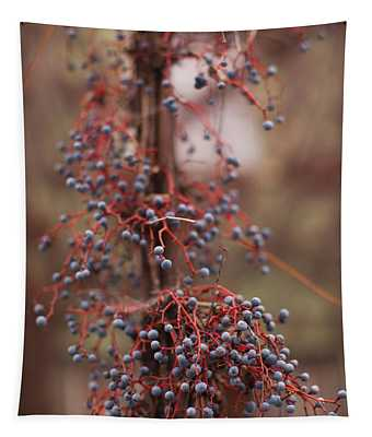 Berries On A Tree, Healdsburg, Russian Tapestry