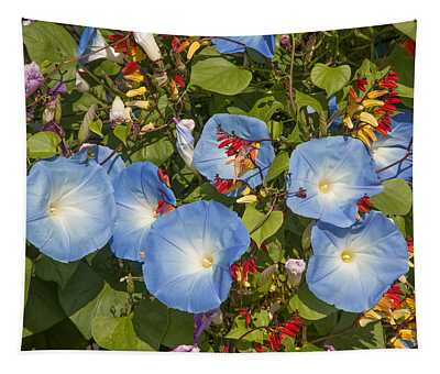 Bhubing Palace Gardens Morning Glory Dthcm0433 Tapestry