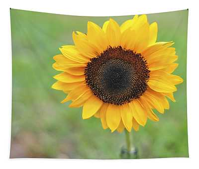 Big Bright Yellow Colorful Sunflower Art Print Tapestry