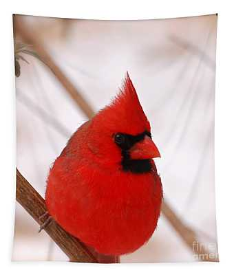 Big Red  Cardinal Bird In Snow Tapestry
