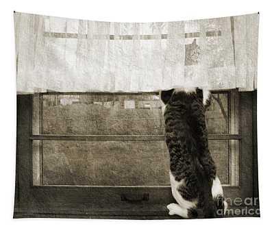 Bird Watching Kitty Cat Bw Tapestry