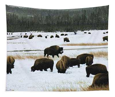 Bison Cows Browsing Tapestry