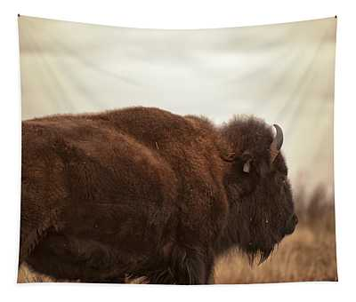 Bison Walking Into The Sunset Tapestry