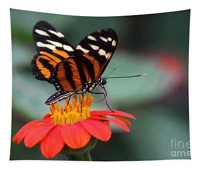 Black And Brown Butterfly On A Red Flower Tapestry
