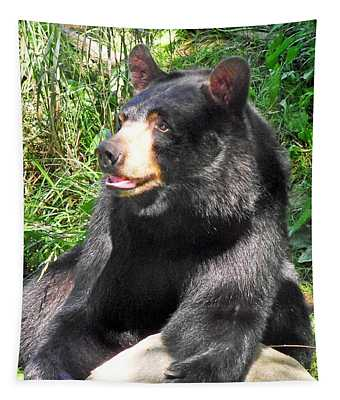 Black Bear Tapestry