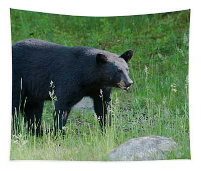 Black Bear Female Tapestry