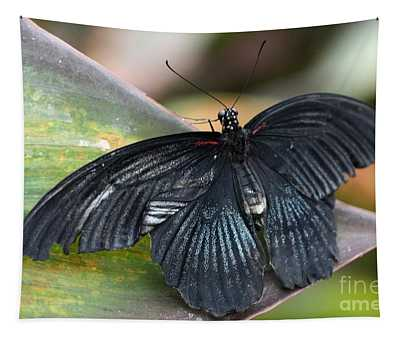 Black Butterfly Tapestry