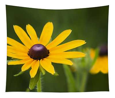 Black Eyed Susan Tapestry