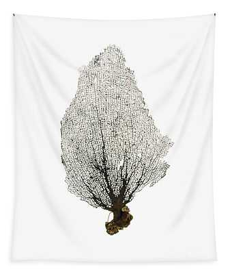 Black Sea Fan No.1 Tapestry