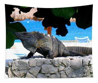 Tapestry featuring the photograph Black Spiny Tailed Iguana by Patti Whitten