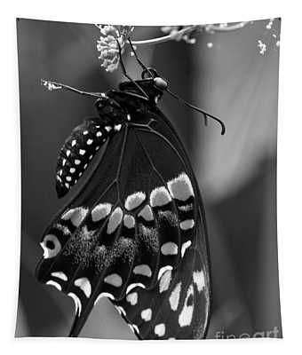 Black Swollowtail  Tapestry