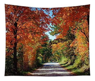 Blaze Of Glory Tapestry