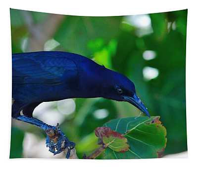 Blue-black Black Bird Tapestry