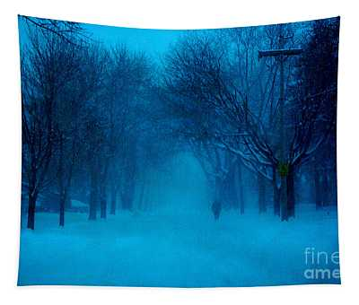 Blue Chicago Blizzard  Tapestry