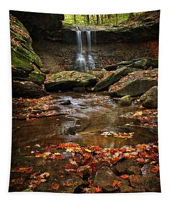Blue Hen Falls In Autumn Tapestry