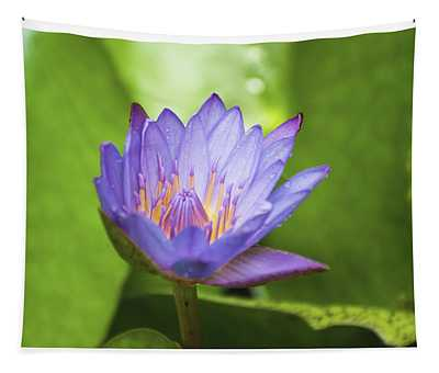 Blue Lotus Tapestry