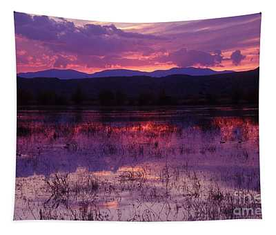 Bosque Sunset - Purple Tapestry