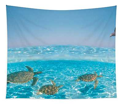 Bottlenose Dolphin Jumping While Tapestry