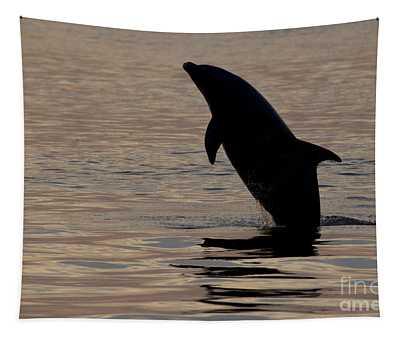 Bottlenose Dolphin Tapestry