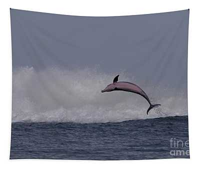 Bottlenose Dolphin Photo Tapestry