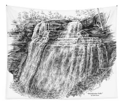 Brandywine Falls - Cuyahoga Valley National Park Tapestry