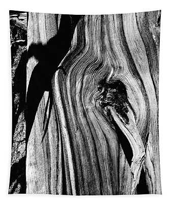 Tapestry featuring the pyrography Bristle-cone Pine-3 by Mae Wertz