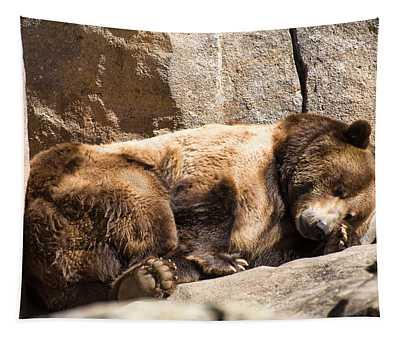 Brown Bear Asleep Again Tapestry