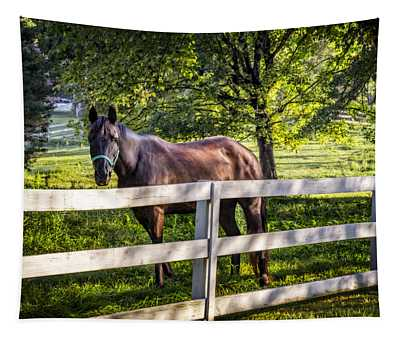 Brown Beauty Tapestry