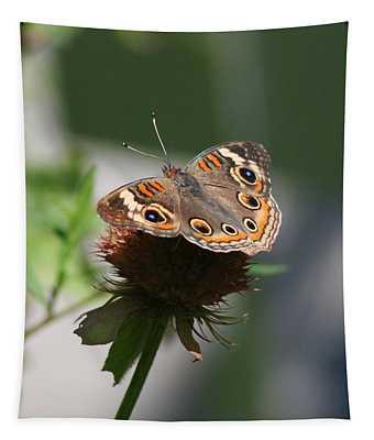 Buckeye Tapestry