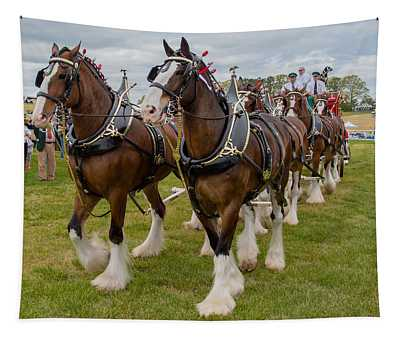 Budweiser Clydesdales Tapestry
