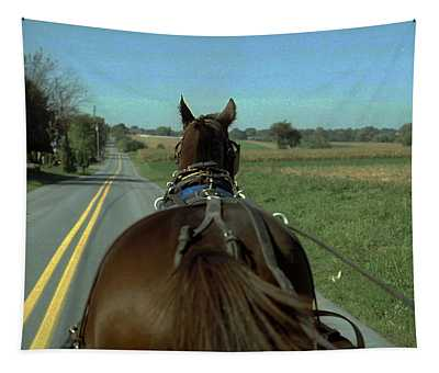 Buggy Ride  Tapestry
