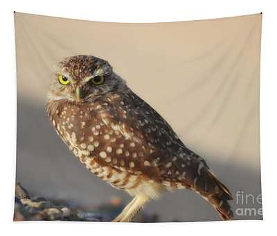 Burrowing Owl  Tapestry
