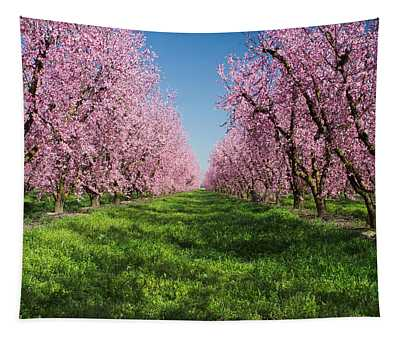 California Peach Tree Orchard  Tapestry