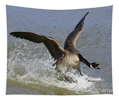 Canada Goose Touchdown Tapestry