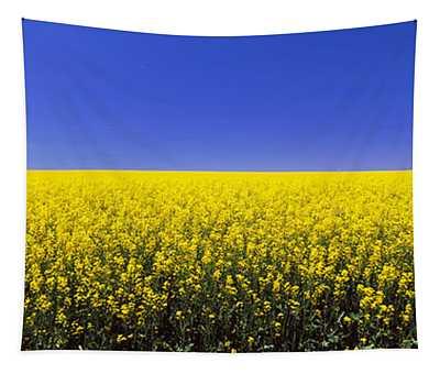 Canola Field In Bloom, Idaho, Usa Tapestry