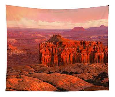 Canyonlands National Park Ut Usa Tapestry