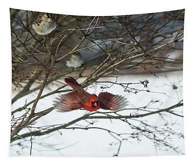 Cardinal In Flight Tapestry
