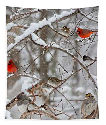 Cardinal Meeting In The Snow Tapestry