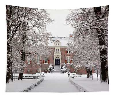 Castle In Winter Dress  Tapestry
