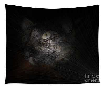 Cat And Light Tapestry