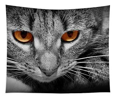 Cat With Scary Red Glowing Eyes Tapestry