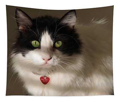 Cat's Eye Tapestry