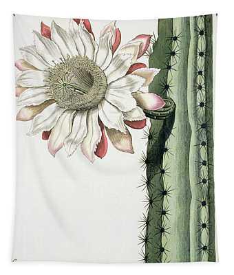 Cereus Erectus Altissimus Syrinamensis Tapestry