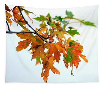 Changing Seasons Tapestry