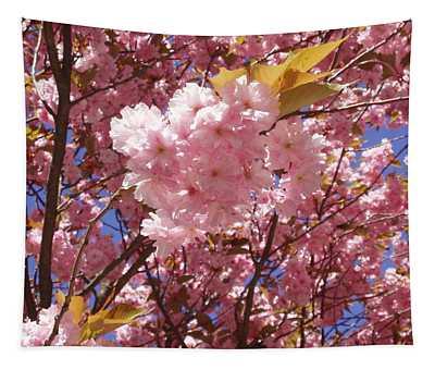 Cherry Trees Blossom Tapestry
