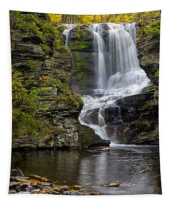 Tapestry featuring the photograph Childs Park Waterfall by Susan Candelario