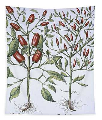 Chilli Pepper Plants Tapestry
