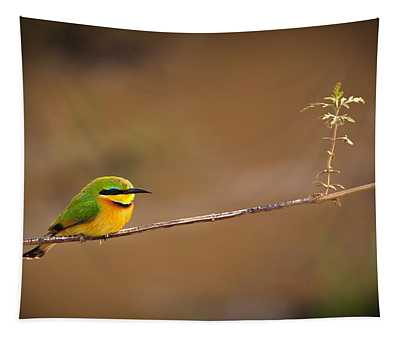 Cinnamon-chested Bee-eater Tapestry